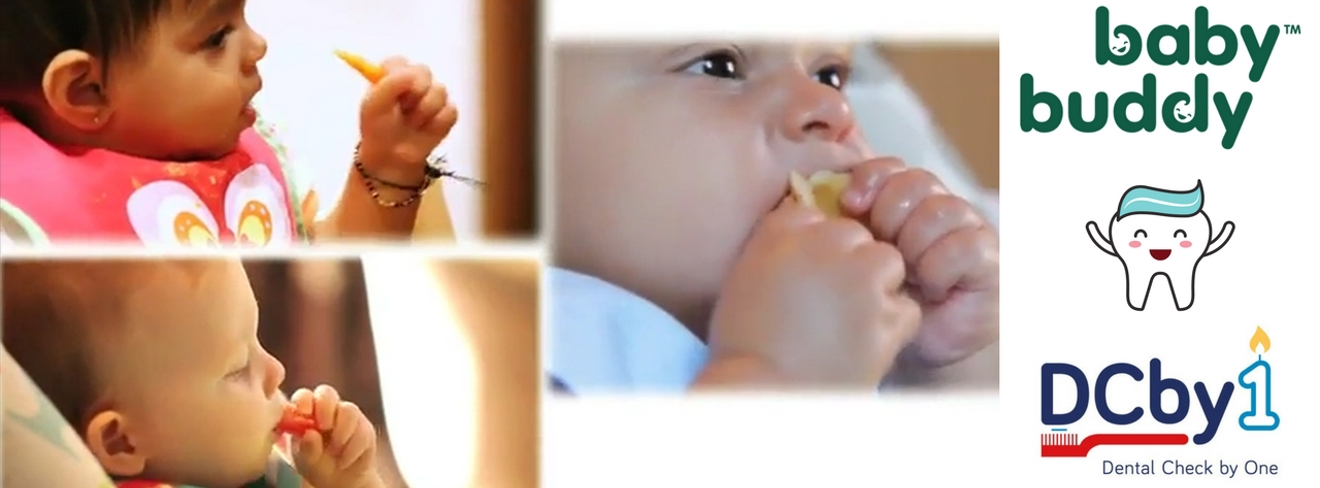 Creating new oral health content for Baby Buddy